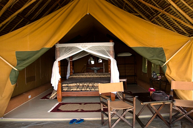 Flamingo_Hill_Camp_10.jpg