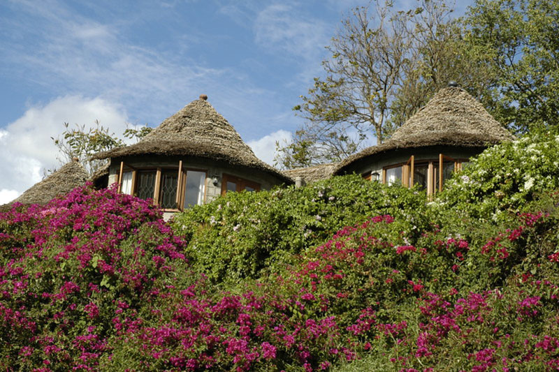 Serena_Arusha_Mountain_Village_05.jpg
